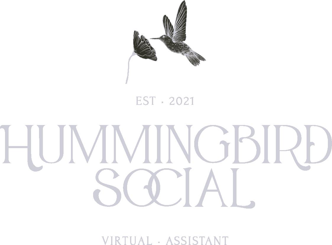 Hummingbird Social Brand and Logo 1