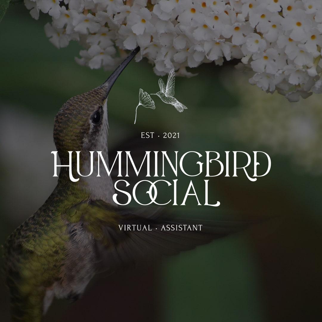 Hummingbird Social Brand